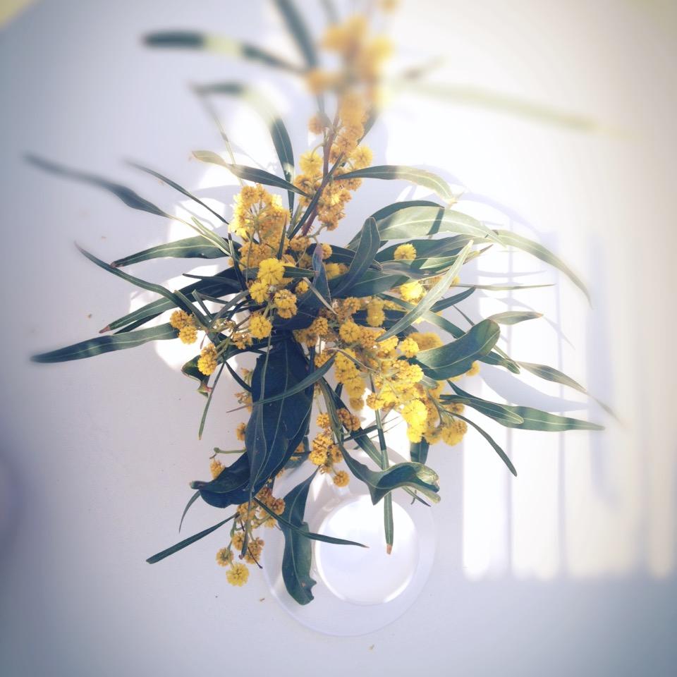 fiori (6)