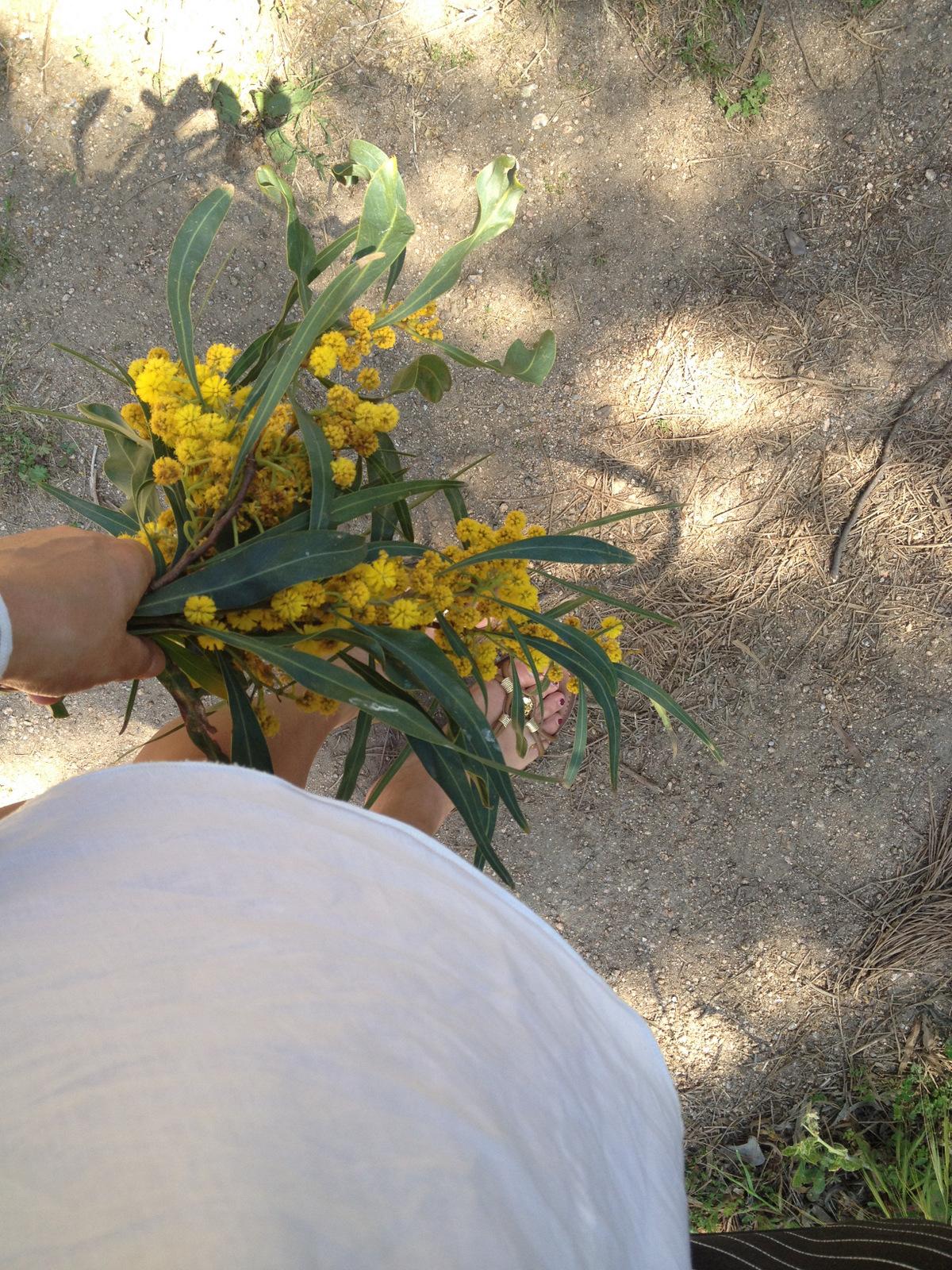 fiori (7)