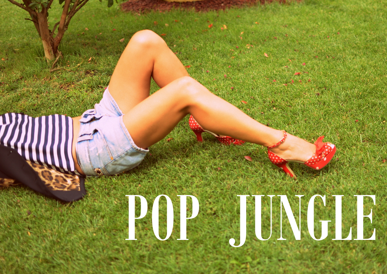 pop jungle (2)
